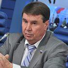 В Совфеде назвали худших кандидатов в президенты Украины
